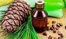 Живица кедровая: лечебные свойства, противопоказания и рецепты настойки и масляного раствора