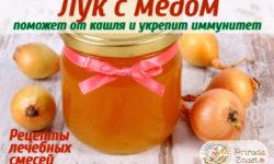 Лук с медом от кашля: то, что советует народная медицина