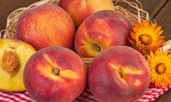 Персик: польза и вред для здоровья листьев, плодов, косточек, цветов