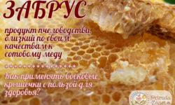 Пчелиный забрус – применение восковой пленки