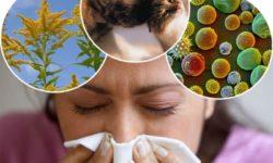 Лечение аллергии нарожными средствами в домашних условиях