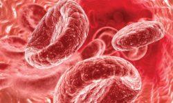 Как повысить гемоглобин быстро: народные средства