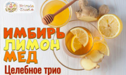 Имбирь с лимоном и медом: рецепт 100 % здоровья