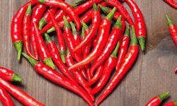 Красный перец: польза ивред, применение влечебных икосметических целях, для похудения (перец чили)