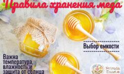 Как хранить мед – рекомендации по выбору тары и места