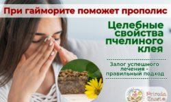 Прополис при гайморите: ингаляции и капли