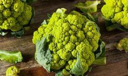 Брокколи: польза и вред капусты, лечебные и кулинарные рецепты, отзывы