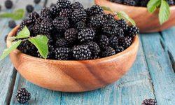 Ежевика: полезные свойства и противопоказания корней, листьев и ягод